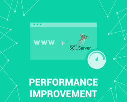 Picture of MS SQL Provider performance optimization (foxnetsoft.com)