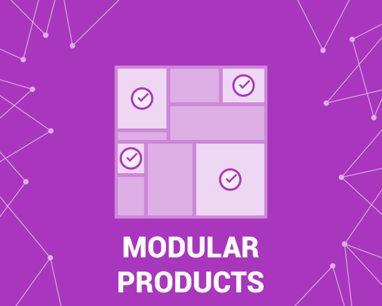Picture of Modular Product (sets of products) (foxnetsoft.com)