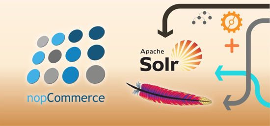Picture of Search Solr plugin (Dev-Partner.biz)