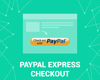 Picture of PayPal Express Checkout (foxnetsoft.com)