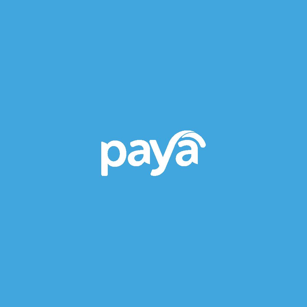 Picture of Paya Direct API Payments (nop4you.com)