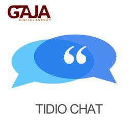 Picture of Tidio Chat