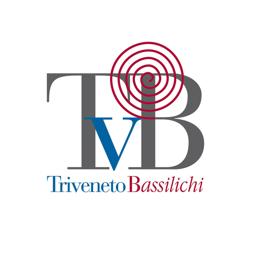 Picture of Consorzio Triveneto Payment module