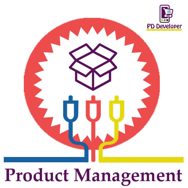 Picture of Product Management (PD Developer)