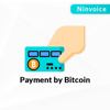 Picture of Bitcoin Payments (ninvoice.com)